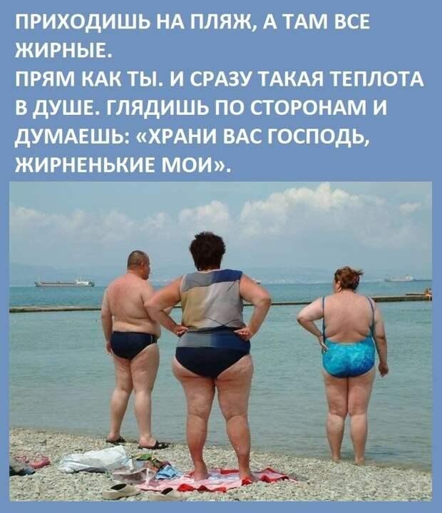 Веселые истории о нас . Лето