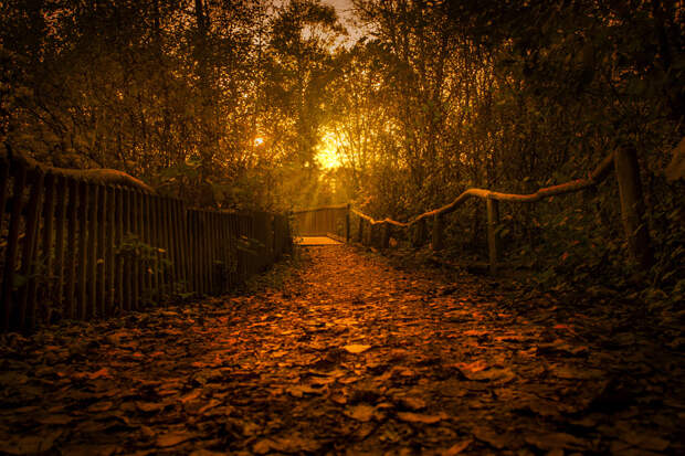 way to the bridge by L8Xpress on 500px.com