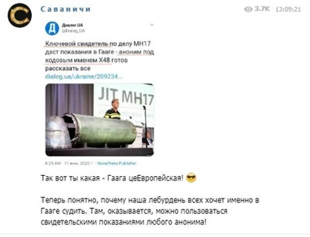 """""""Так вот ты какая - Гаага!"""" В России разгадали """"главный секрет"""" судебного процесса по MH17"""