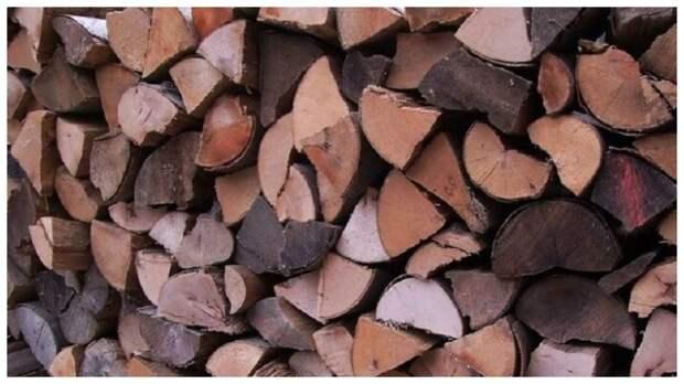 Тест на внимательность: найдите мышку в дровах за одну минуту