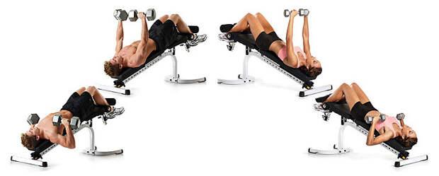 Жим гантелей лежа на скамье с отрицательным наклоном