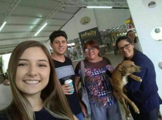 Бездомный пес стал звездой, взяв книгу в магазине без спроса