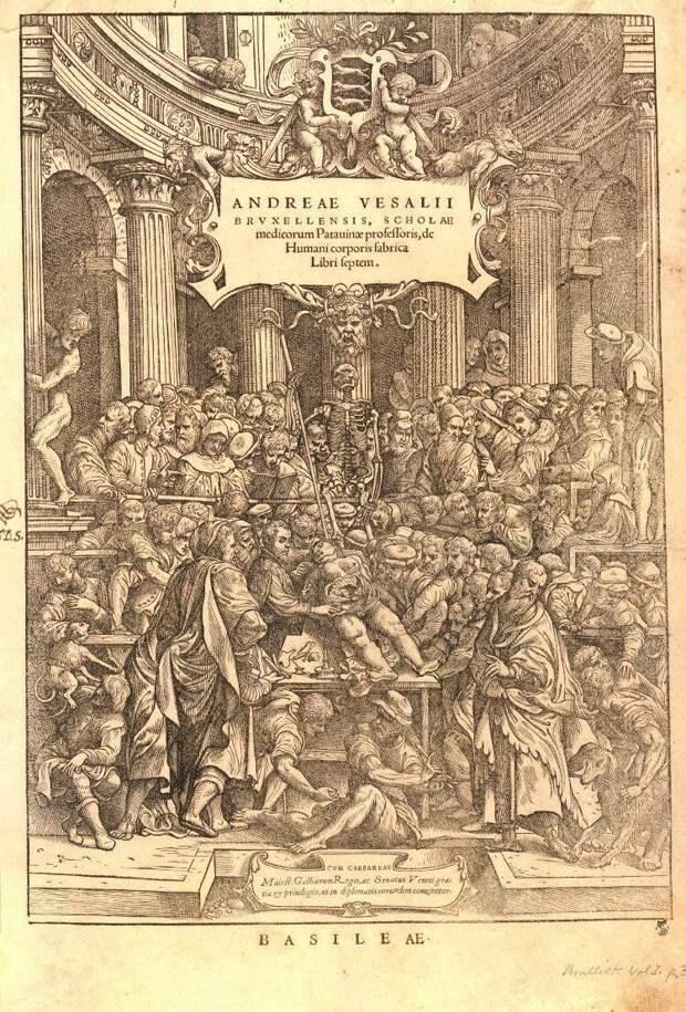 Представление в анатомическом театре, 1543 год.