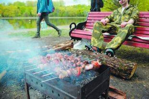 Штраф со вкусом шашлыка. За что грозит наказание на пикнике?
