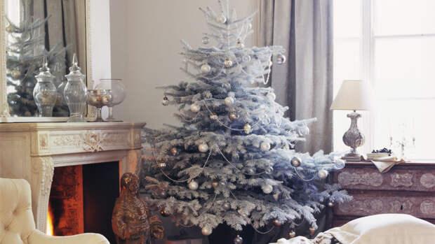 Эксперт рассказала, когда можно убирать елку из дома