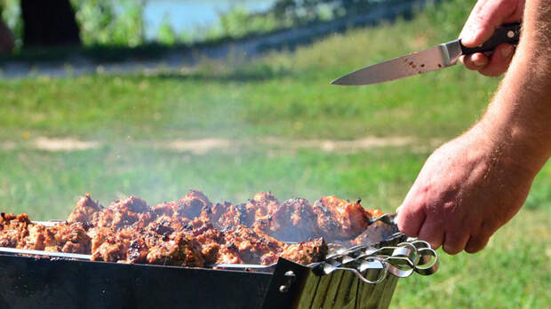 Петербуржца ранили ножом в живот во время жарки шашлыка