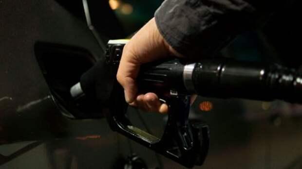 В России стабилизируют цены на топливо
