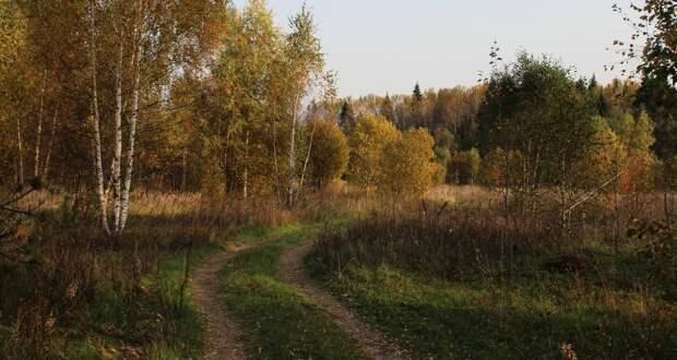 Красоты России (#588)