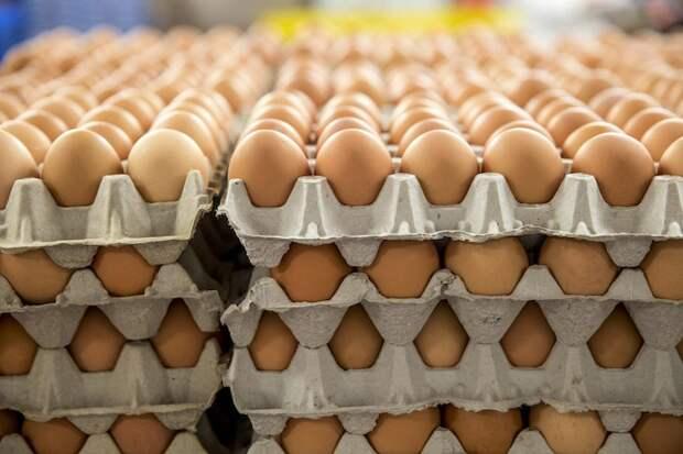 10 самых важных фактов о яйцах от Росконтроля