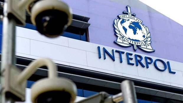 Кандидатура главы МВД Эмиратов на пост президента Интерпола оскорбительна — HRW
