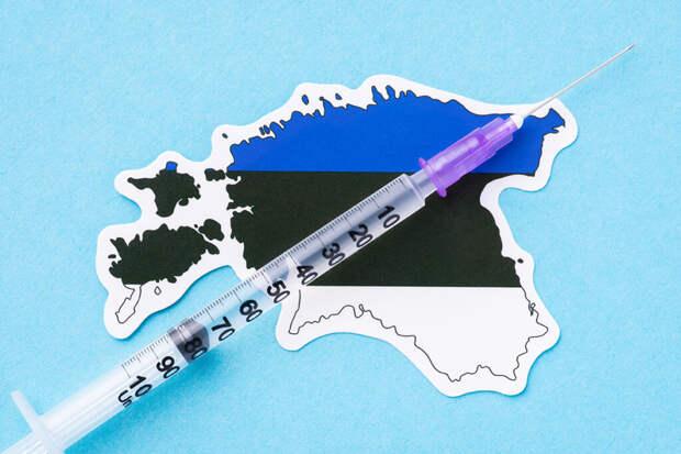 Привитым «Спутником V» россиянам разрешили въезд в Эстонию