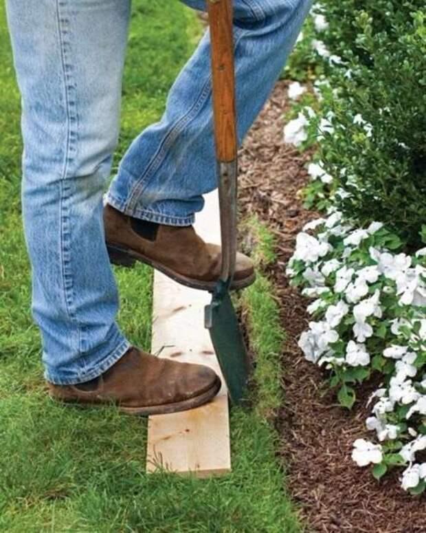 10 советов бывалых садовников