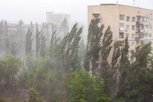Погода на завтра: синоптик рассказала, кому приготовиться к дождям и грозам