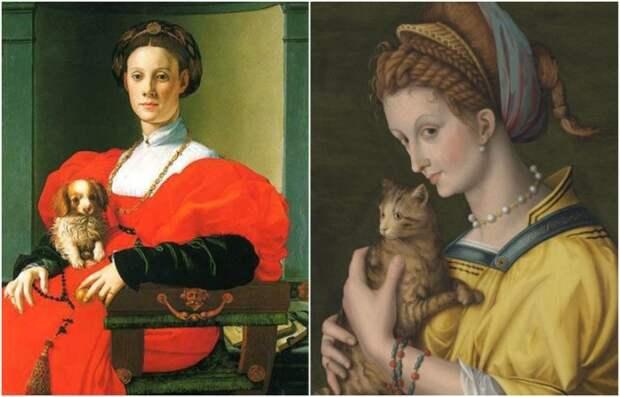 Собаки и кошки служили приманкой для вшей и блох