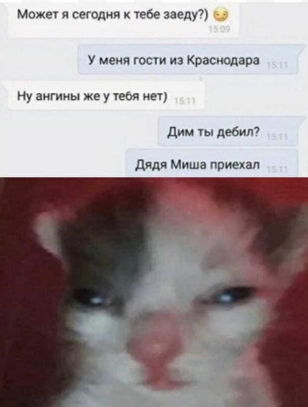 Мемы и приколы про