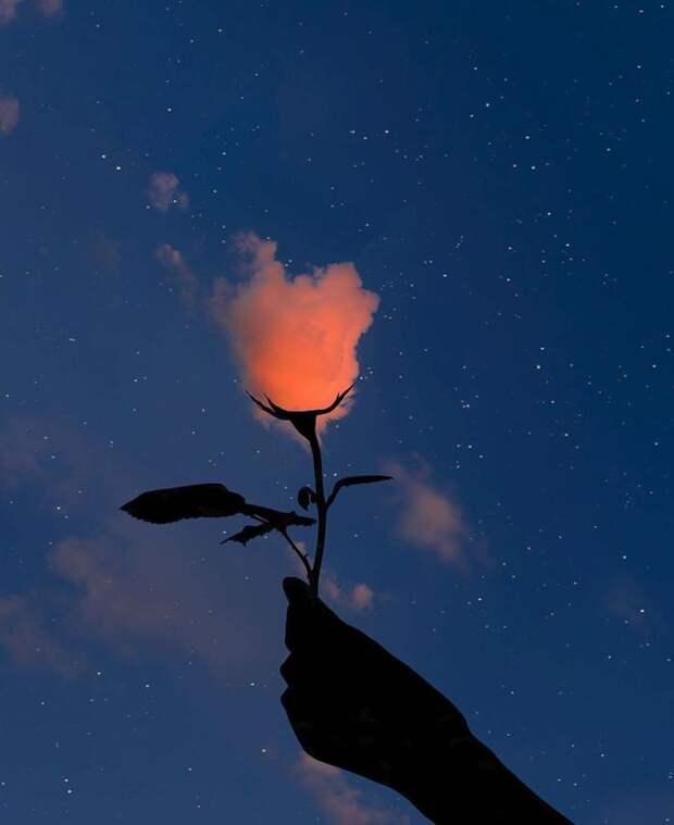 Cъемка цветочка