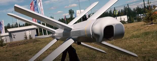 Субсидии для промышленных предприятий в Удмуртии, домашний лев в Урюпинске и испытания дронов-самоубийц: новости к этому часу