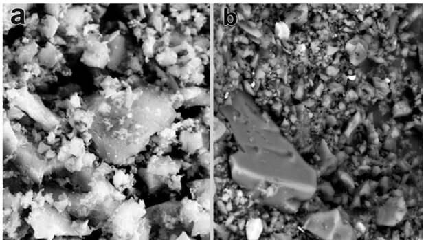 Ученые нашли способ восстановить почву после загрязнения тяжелыми металлами
