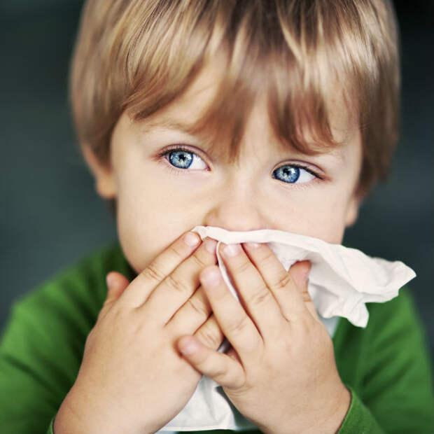 10 предрассудков о гриппе и ОРВИ, которые развенчал доктор Комаровский