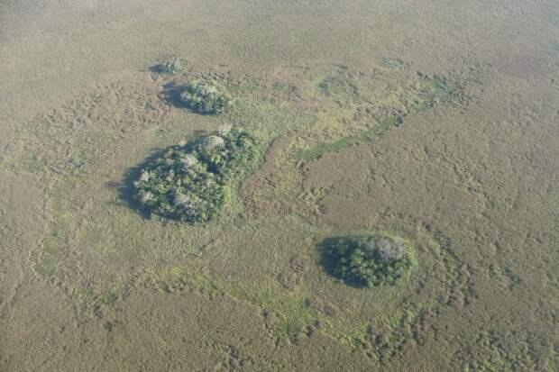 На Амазонке найдены древние «искусственные острова» возрастом около 10000 лет