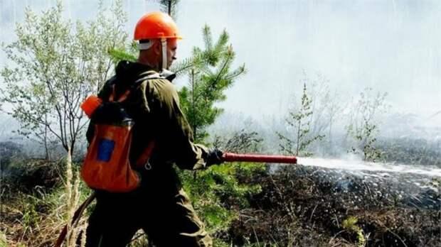 Огонь от лесного пожара вплотную приблизился к якутскому поселку Хандыга