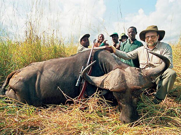 Обыкновенная черная антилопа — одна из самых крупных антилоп Африки. Ее мощные саблевидные рога могут достигать полутора метров в длину. Славный трофей! Фото Павла Гусева.