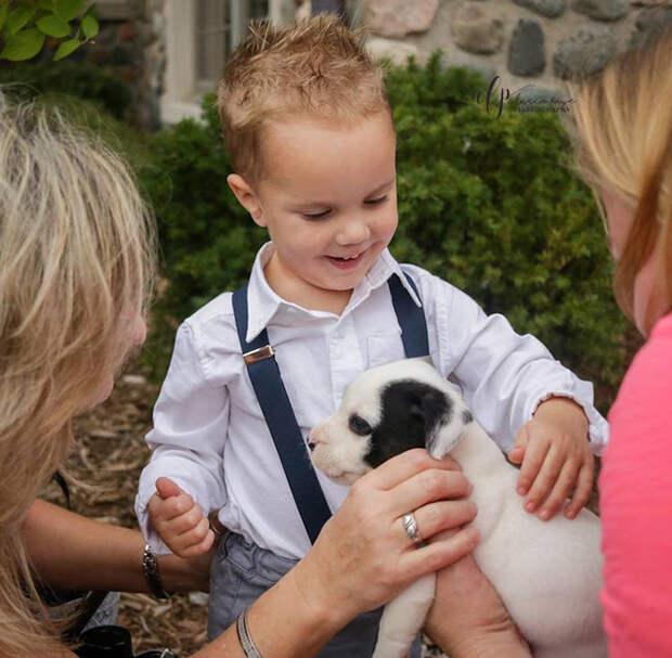 Малыши на свадьбе были особенно рады возможности потискать щенят