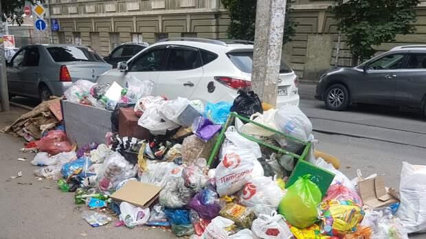 Логвиненко нашел способ избавить Ростов отстихийных свалок
