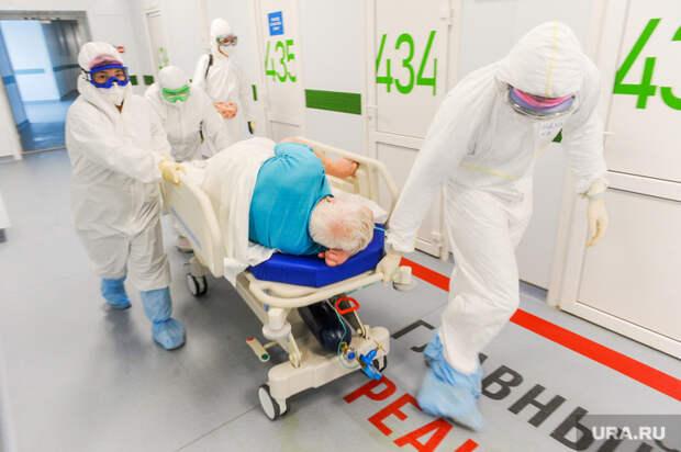 Челябинская область обновила максимум смертности покоронавирусу
