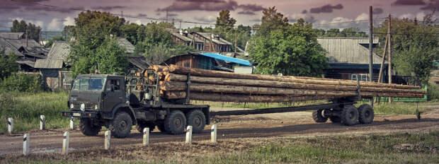 Невероятно, но факт: в России возник дефицит леса и товарной древесины!.. Дожили, называется...
