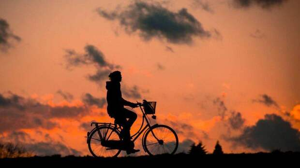Велосипед/ Фото pixabay.com