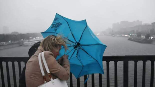 Тишковец предупредил о штормовом ветре в Москве 21 октября