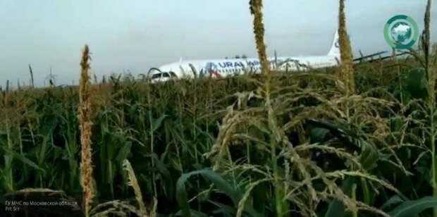 В Кремле пообещали наградить пилотов, спасших жизни людей под Жуковским