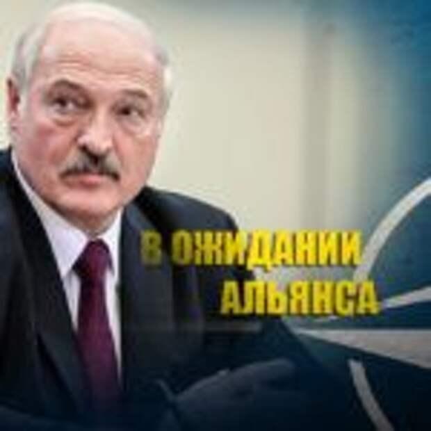 Натовские войска подошли к белорусским границам, заявил Лукашенко