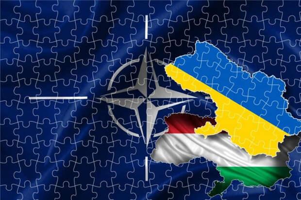 Украина рассчитывает на поддержку Венгрии, не поддерживая венгров