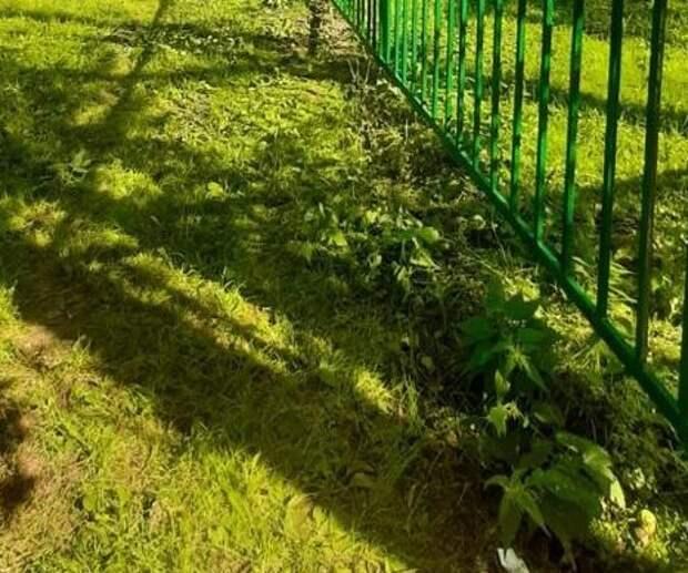 Забор у школы на Ленской покрасили по просьбе жителей
