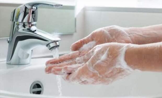 Могут ли бактерии жить на куске мыла?