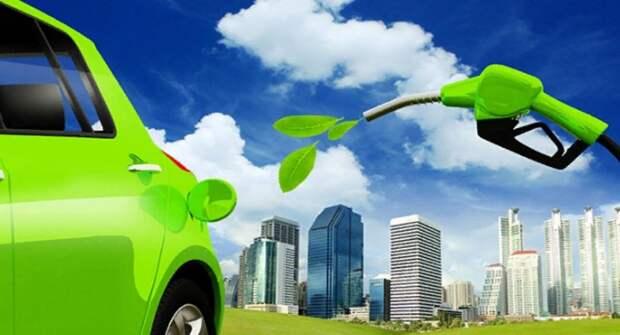 Volkswagen, Bosch и Shell объединяют усилия для создания возобновляемого топлива
