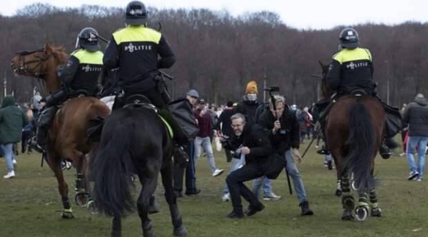 Любителям Запада рекомендуется посетить акции протеста в Нидерландах