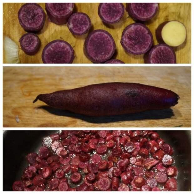 Фиолетовый батат «Пурпурный» (Purple)