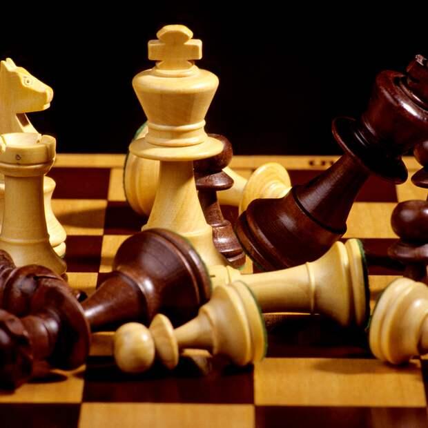 Каспаров ответил назвавшей шахматы расистским видом спорта радиостанции:  Летние виды: Спорт: Lenta.ru