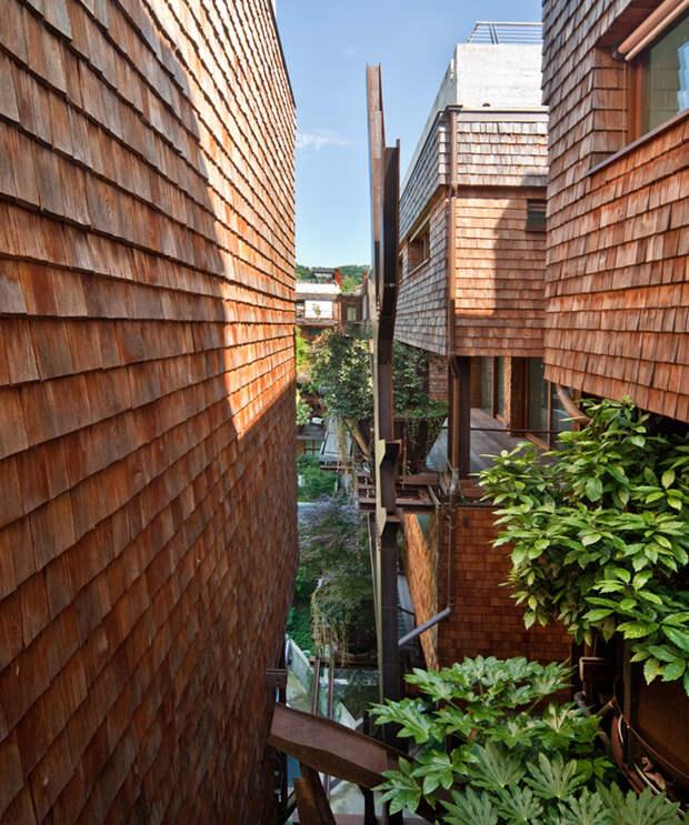 Уникальный живой дом-сад в городских условиях