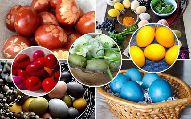 Красим яйца натуральными красителями - 6 рецептов