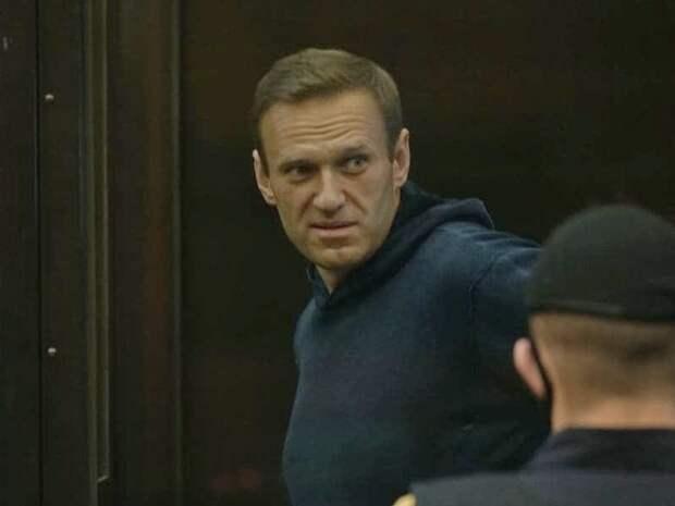 Волков рассказал о намерении Amnesty International в ближайшие дни вернуть Навальному статус узника совести