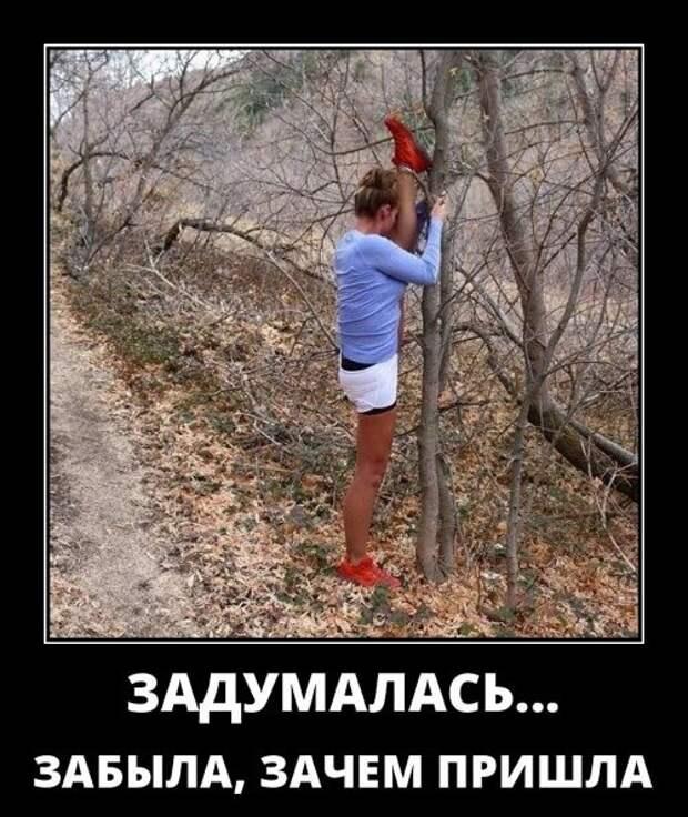Фото русский демотиватор | Ололо - смешные картинки и веселые истории