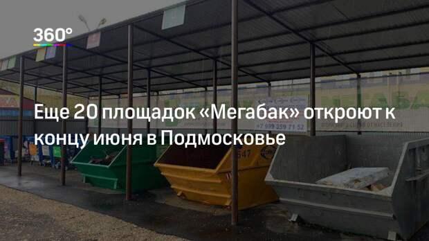 Еще 20 площадок «Мегабак» откроют к концу июня в Подмосковье