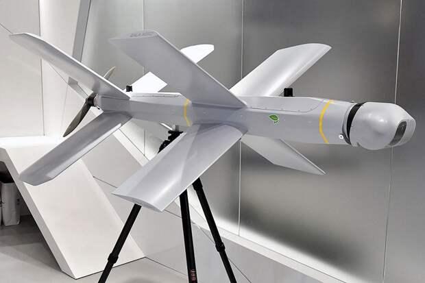 РФ создала систему воздушного минирования против беспилотников