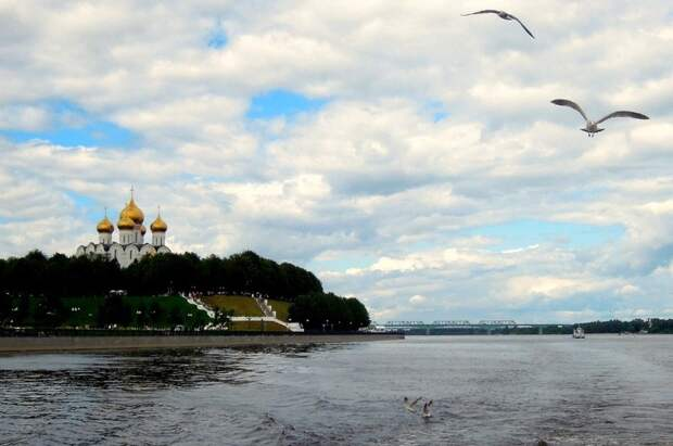 Воронеж вместо Турции: ростовчане возмущены закрытием границ натеплых курортах