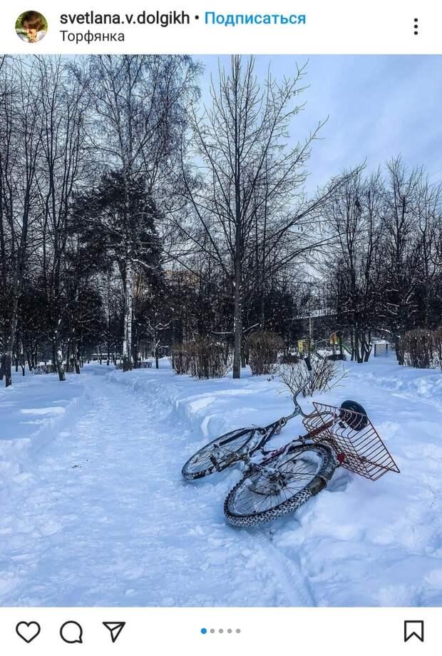 Фото дня: в парке «Торфянка» катались на велосипеде по снегу