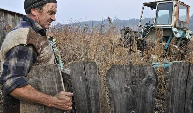 Фермеры в России: битвы за урожай и выживание в рынке
